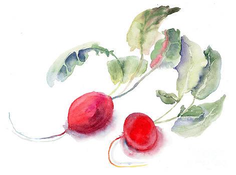 Garden radish by Regina Jershova