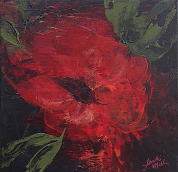 Garden Rose by Jackie Little Miller