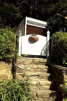 Barbara Giordano - Garden Steps