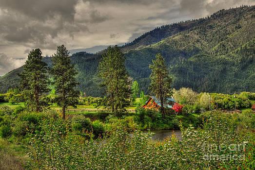 Garden Valley by Sam Rosen