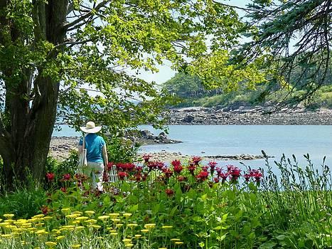 Garden Walk by Elaine Franklin