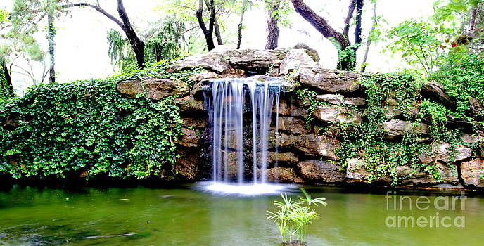 Garden Waterfall by Christy Phillips