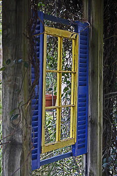 Garden window by Lily K
