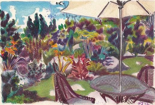 Garden with umbrella by Daniela Johnson