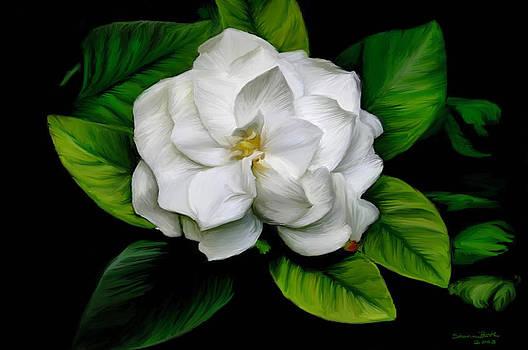 Gardenia by Sharon Beth