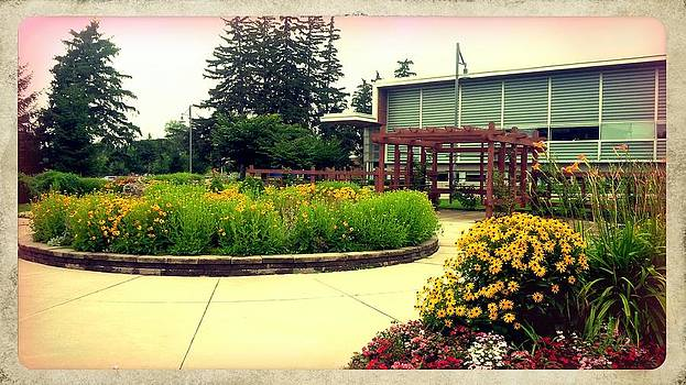Gardens at Burlington Library by Ted Mahy