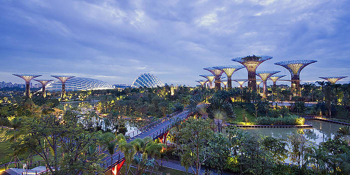 Gardens by the Bay by Ng Hock How