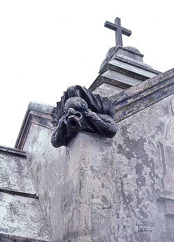 Gargoyle on the Italian Vault by Terry Webb Harshman