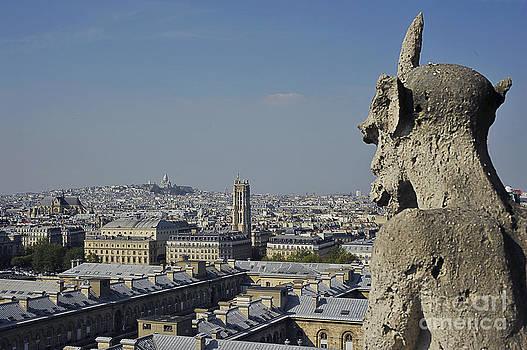 Gargoyle's view of Paris by Tina Osterhoudt