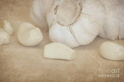 Sophie Vigneault - Garlic 3