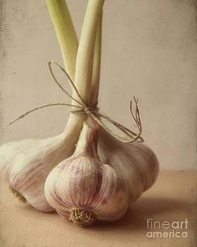 Garlic by Jillian Audrey Photography