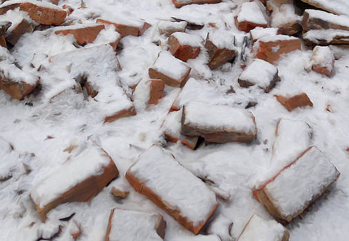 Garman Bricks in Snow by Mary Vollero