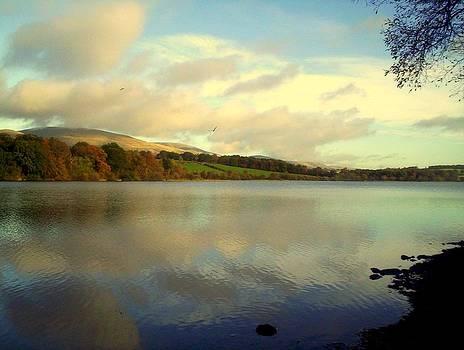 Gartmorn Dam Scotland in Autumn by Bill Lighterness
