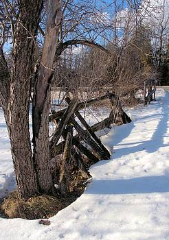 Valerie Kirkwood - Gate Fence in Winter