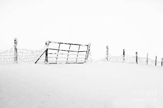 Anne Gilbert - Gate in Snow