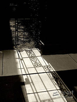 Gate Shadow by   Joe Beasley