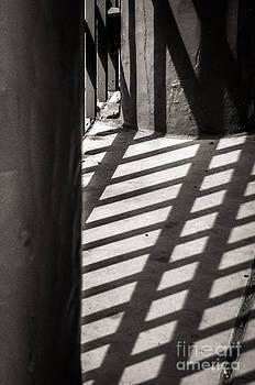 Gate Shadows II by Sherry Davis