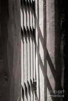 Gated Shadows by Sherry Davis