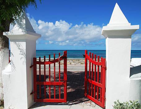 Ramunas Bruzas - Gates to Paradise
