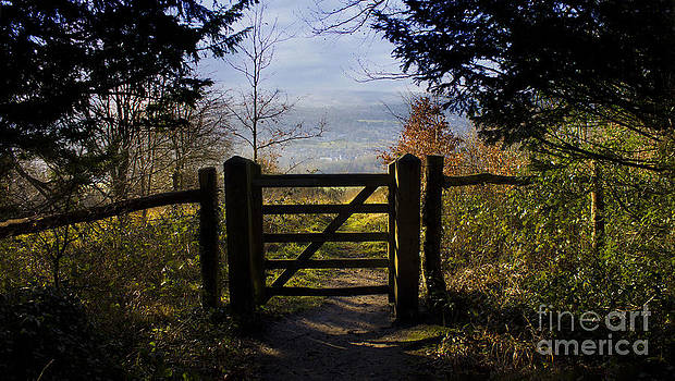 Gateway to the countryside by Michelle Orai