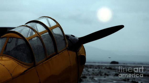 Gathering Rain Dust - PT-26 Harvest Yellow by Steven Digman