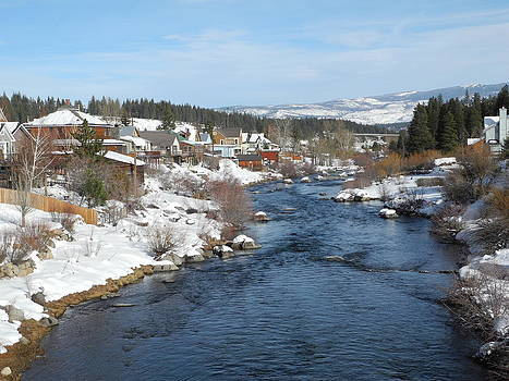 Gazing Over the Truckee River by Sue McElligott