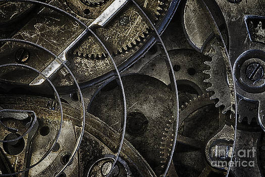 Gears by Vicki DeVico
