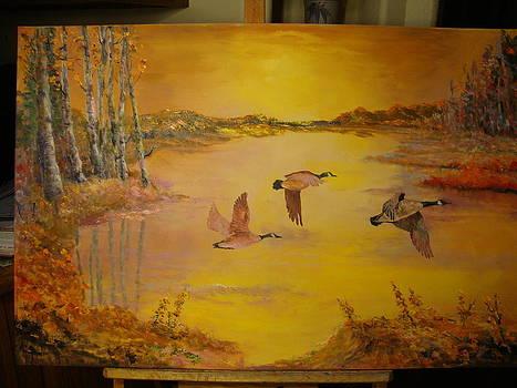 Geese Landing by Ann Arensmeyer