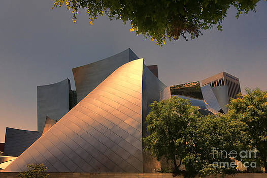 Chuck Kuhn - Gehry VII