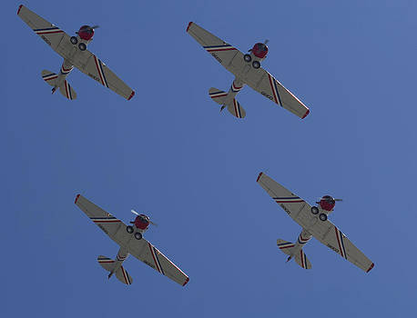 Geico Skytypers by April Wietrecki Green