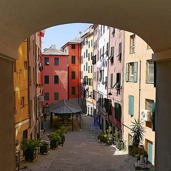 Herb Paynter - Genoa Arch Community