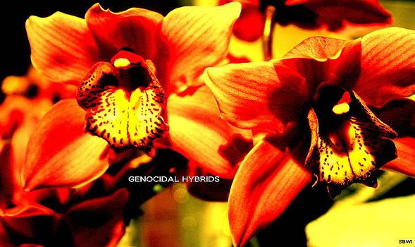 Genocidal by Seth Williams