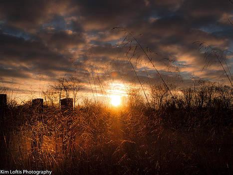 Gentle Winters Morning  by Kim Loftis