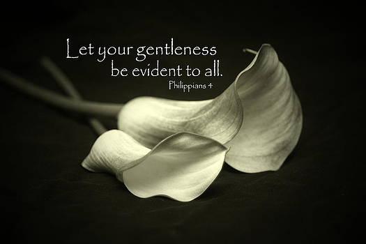 Gentleness by Linda Fowler