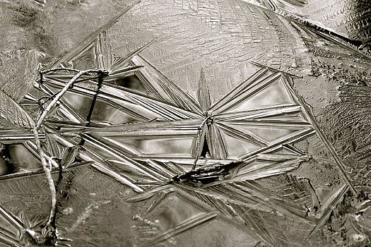 Geometry by David Pickett