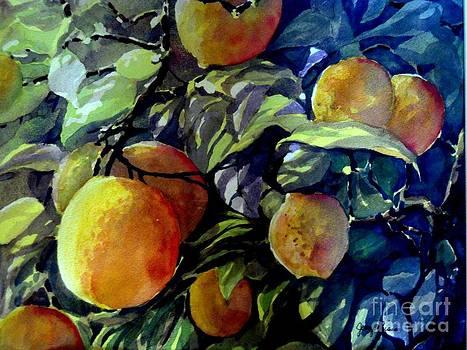 Georgia Peaches by Jerry Aissis