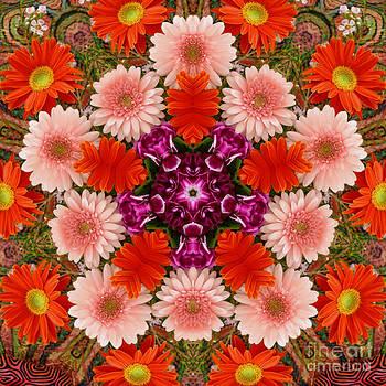 Gerbera Floral Kaleidoscope by Jennifer Reitmeyer