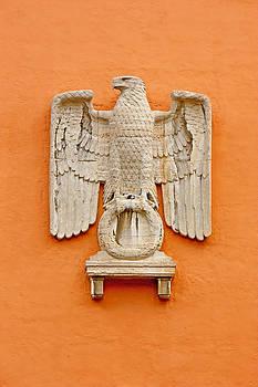 German eagle by Borislav Marinic