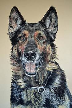 German Shepherd Jim by Ann Marie Chaffin