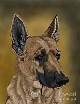 German Shepherd by Karen Sheltrown