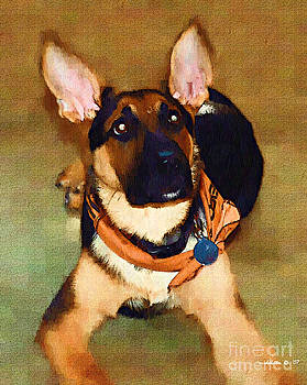 German Shepherd by Margie Middleton