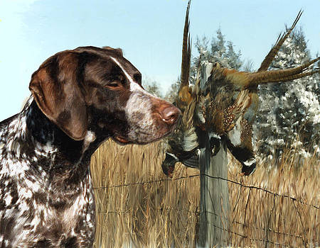 German Shorthair by Bethany Caskey