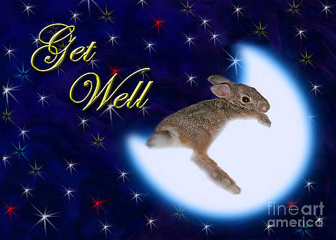 Jeanette K - Get Well Bunny Rabbit