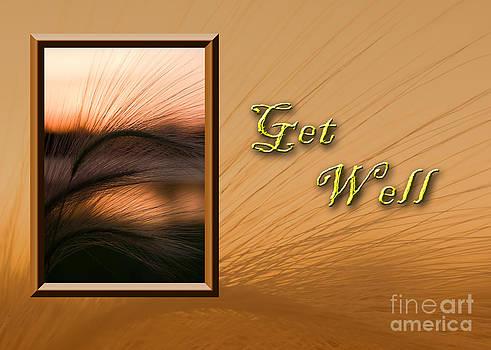Jeanette K - Get Well Grass Sunset