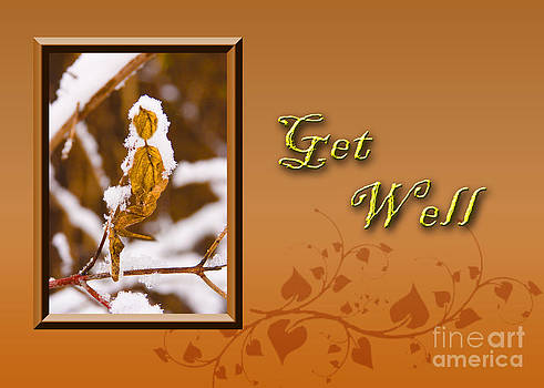 Jeanette K - Get Well Leaf