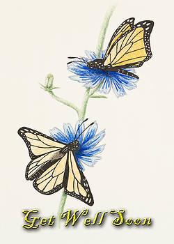 Jeanette K - Get Well Soon Butterflies