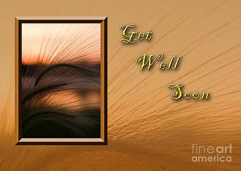 Jeanette K - Get Well Soon Grass Sunset