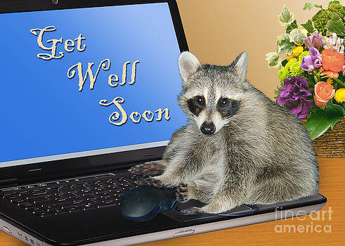 Jeanette K - Get Well Soon Raccoon