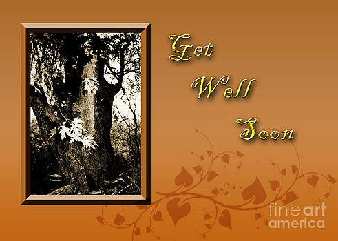 Jeanette K - Get Well Soon Willow Tree