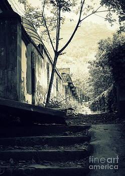 Shawna Gibson - Getting lost